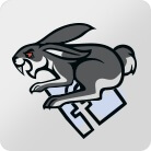 AliDropShip Social Rabbit